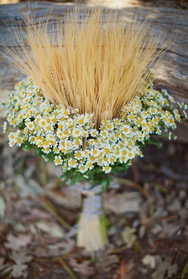 camomile bouquet