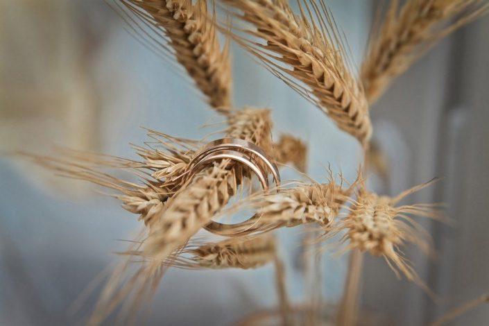 wedding rings wheat