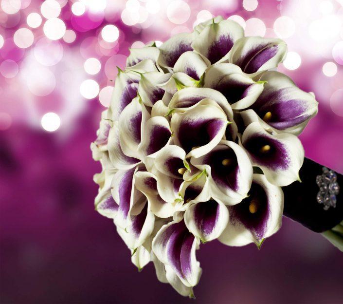 wedding bouquet white-purple calla lily
